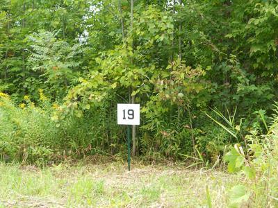 19 JENKS RD, Cheshire, MA 01225 - Photo 2