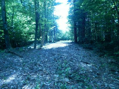 TOWN HILL RD, Sandisfield, MA 01255 - Photo 1