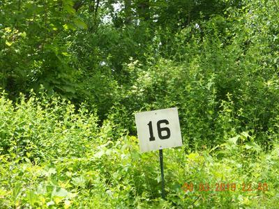 16 JENKS RD, Cheshire, MA 01225 - Photo 2