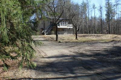101 HAZELTON RD, ROWE, MA 01367 - Photo 1