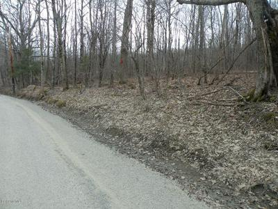 GOODRICH HOLLOW RD, Stephentown, NY 12169 - Photo 2