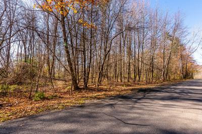 1B TREE FARM RD, Stockbridge, MA 01262 - Photo 2