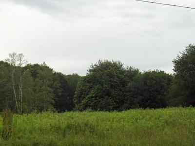 LOTS C & F STATE RD, Richmond, MA 01254 - Photo 2