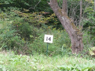 14 JENKS RD, Cheshire, MA 01225 - Photo 2