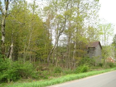 0 ELLENTON MOUNTAIN & ELROYS HILL RD, Shunk, PA 17768 - Photo 2