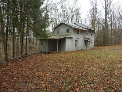 10748 ROUTE 154, Shunk, PA 17768 - Photo 1