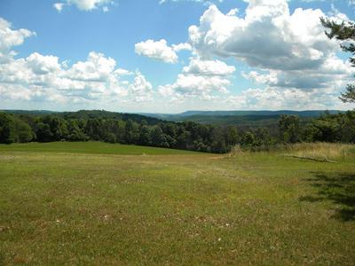0 SAXTON HILL RD, Granville Summit, PA 16926 - Photo 1