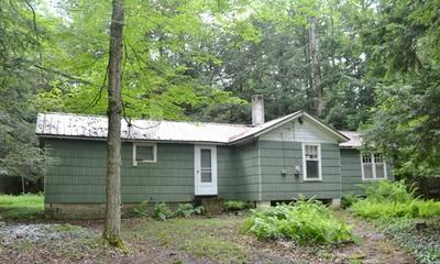 11625 ROUTE 154, Shunk, PA 17768 - Photo 1