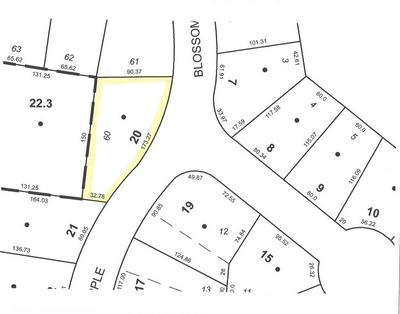 6 APPLE BLOSSOM LN, Owego, NY 13827 - Photo 1