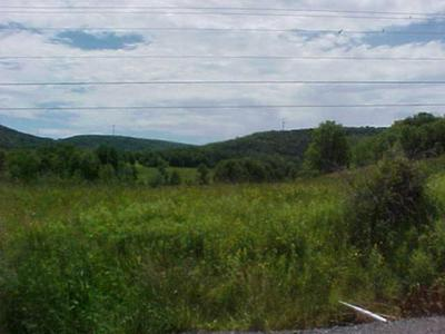 . OLD STATE ROAD, Mainesburg, PA 16932 - Photo 1