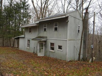 10748 ROUTE 154, Shunk, PA 17768 - Photo 2