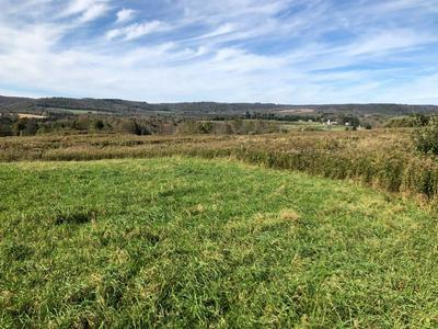 0 HILL TOP VIEW ROAD, Shunk, PA 17768 - Photo 1