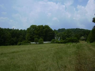 0 SHELBY RD, MADISON, VA 22727 - Photo 1