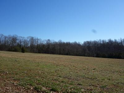 HORSESHOE RD, ARRINGTON, VA 22922 - Photo 2