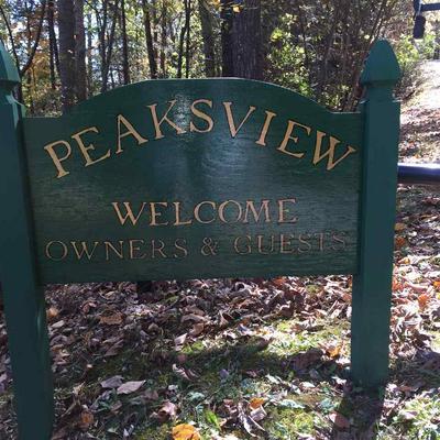 LOT 20 PEAKSVIEW DR, WILLIAMSVILLE, VA 24487 - Photo 2
