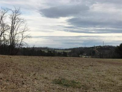 36 W HILL FARM DR, STAUNTON, VA 24401 - Photo 1