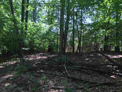 LOT B2 BURNLEY STATION RD, BARBOURSVILLE, VA 22923 - Photo 2