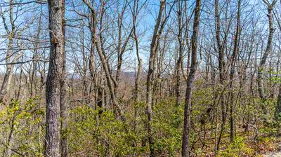 LOT 7 ELK MEADOW DR, AFTON, VA 22920 - Photo 1