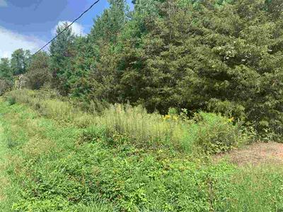 1205 CARPENTERS MILL RD, RUCKERSVILLE, VA 22968 - Photo 1