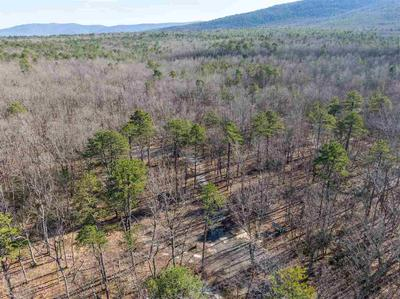 22.647 ACRES ON SASSAFRAS LN, STUARTS DRAFT, VA 24477 - Photo 1