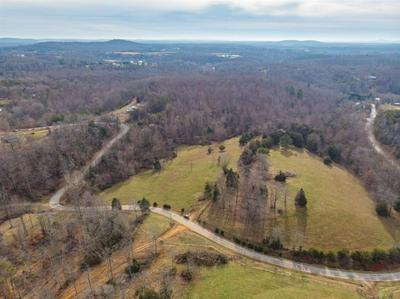 TBD HORSESHOE RD, ARRINGTON, VA 22922 - Photo 2
