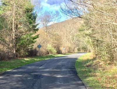 TBD DRY RUN RD, WILLIAMSVILLE, VA 24487 - Photo 1