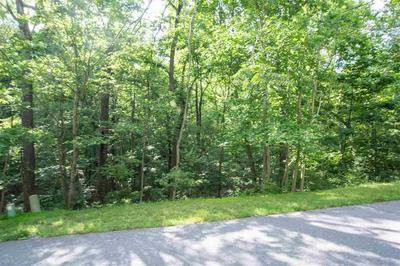NICKLAUS LN, MCGAHEYSVILLE, VA 22840 - Photo 1
