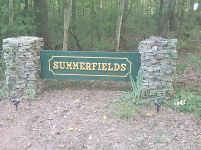 TBD SUMMERFIELDS LN, RUCKERSVILLE, VA 22968 - Photo 2