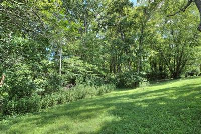 TBD GUN ST, WAYNESBORO, VA 22980 - Photo 2