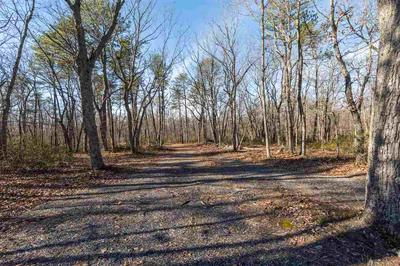 22.647 ACRES ON SASSAFRAS LN, STUARTS DRAFT, VA 24477 - Photo 2