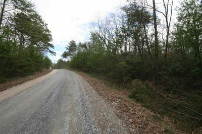 TBA LOT M SELMA RD, HOWARDSVILLE, VA 24562 - Photo 2
