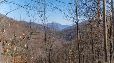 TBD CRABTREE FALLS HWY, Montebello, VA 24464 - Photo 2