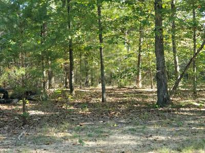 0 BLACK WALNUT RUN RD, RHOADESVILLE, VA 22542 - Photo 1
