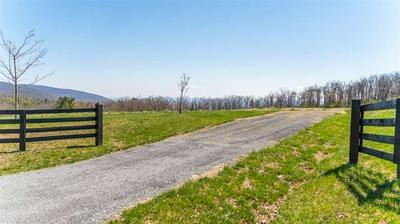 LOT 2 HOWARDSVILLE TPKE, AFTON, VA 22920 - Photo 2