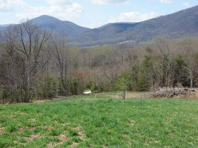 744B LEVEL GREEN RD, ROSELAND, VA 22967 - Photo 1
