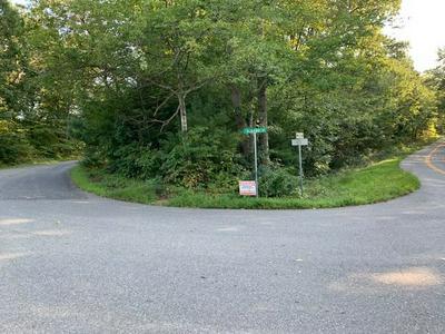 0 TOMS RD, RUCKERSVILLE, VA 22968 - Photo 2