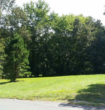 275 PINE RD, SCOTTSVILLE, VA 24590 - Photo 1