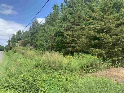 1205 CARPENTERS MILL RD, RUCKERSVILLE, VA 22968 - Photo 2