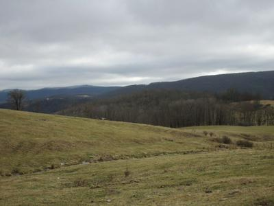 1543 MOUNTAIN TPKE, MONTEREY, VA 24465 - Photo 1