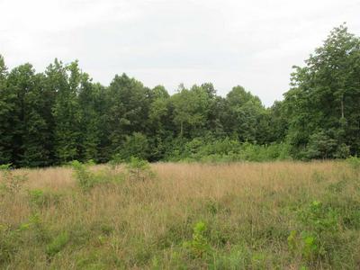 0 OLD GREEN MOUNTAIN RD, Esmont, VA 22937 - Photo 1