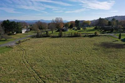 TBD SOUTHWEST VIEW DR, LEXINGTON, VA 24450 - Photo 2