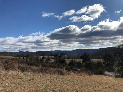 12 FOREST GROVE RD, LEXINGTON, VA 24450 - Photo 2