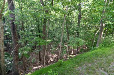 NICKLAUS LN, MCGAHEYSVILLE, VA 22840 - Photo 2