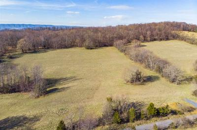 8.46 ACRES ON GOOSE CREEK RD, RAPHINE, VA 24472 - Photo 2