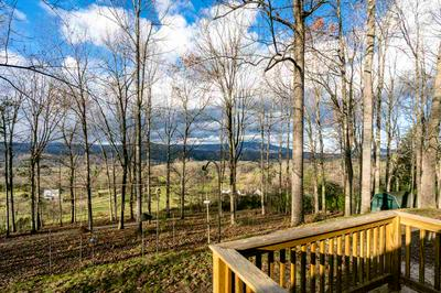 1874 TROXEL GAP RD, CRAIGSVILLE, VA 24430 - Photo 1