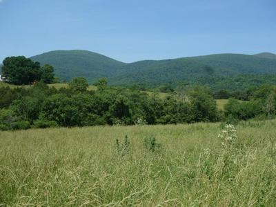 LOT B HILLSIDE LN, AFTON, VA 22920 - Photo 2