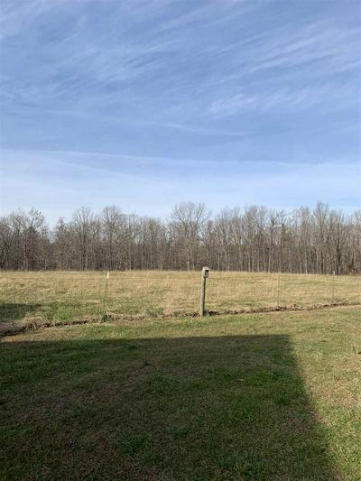 264 DIGGS LN, STUARTS DRAFT, VA 24477 - Photo 2