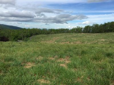 LOT 1 HOWARDSVILLE TPKE, AFTON, VA 22920 - Photo 2
