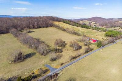 11.96 ACRES ON GOOSE CREEK RD, RAPHINE, VA 24472 - Photo 2