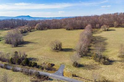 8.46 ACRES ON GOOSE CREEK RD, RAPHINE, VA 24472 - Photo 1